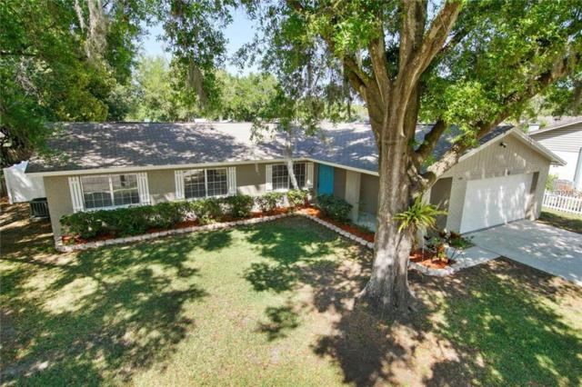113 Field Lane, Seffner, FL 33584 (MLS #T2935714) :: Arruda Family Real Estate Team
