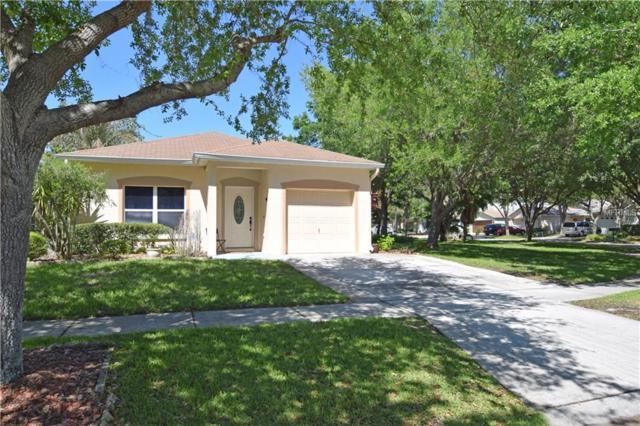 5813 Tanagerlake Road, Lithia, FL 33547 (MLS #T2935745) :: BCA Realty