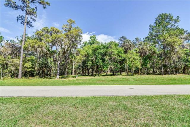 5626 Creek Ridge Road, Brooksville, FL 34601 (MLS #T2935763) :: The Duncan Duo Team