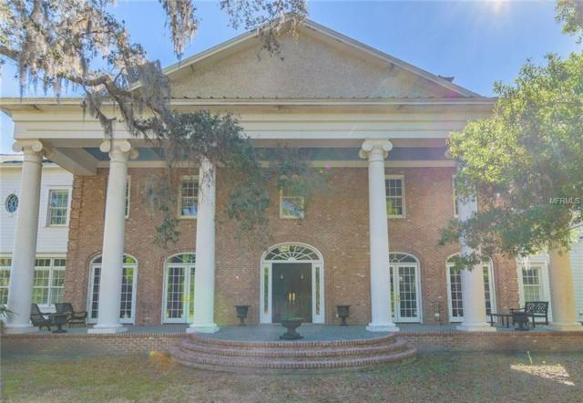 18501 Council Crest Drive, Odessa, FL 33556 (MLS #T2935774) :: The Duncan Duo Team