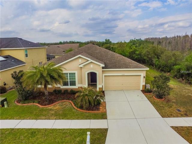 31525 Bearded Oak Drive, Wesley Chapel, FL 33543 (MLS #T2935779) :: Team Bohannon Keller Williams, Tampa Properties
