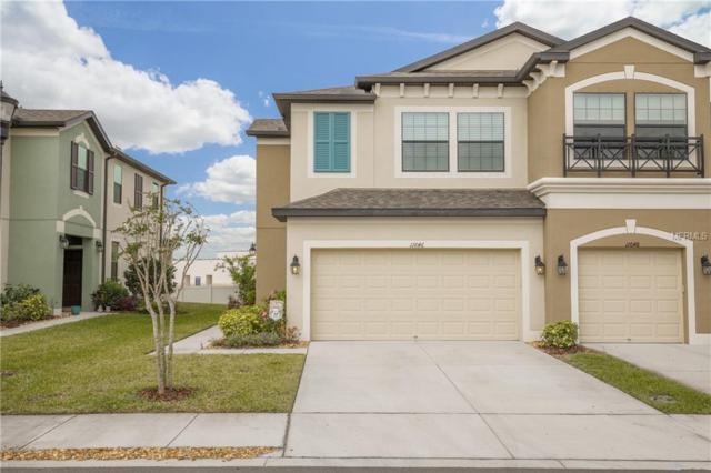 11646 Crowned Sparrow Lane, Tampa, FL 33626 (MLS #T2935832) :: Delgado Home Team at Keller Williams