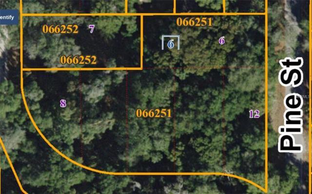 East Lake Avenue, Seffner, FL 33584 (MLS #T2935903) :: Arruda Family Real Estate Team