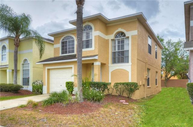 1609 Prowmore Drive, Brandon, FL 33511 (MLS #T2935910) :: Team Bohannon Keller Williams, Tampa Properties