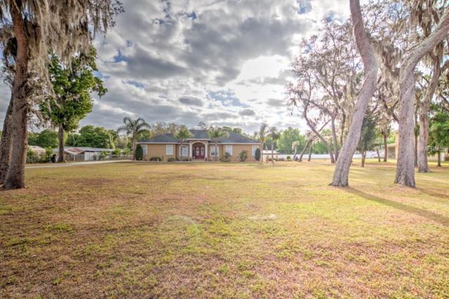 3510 Stearns Park Road, Valrico, FL 33596 (MLS #T2936082) :: Arruda Family Real Estate Team