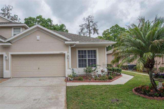 1347 Big Pine Drive, Valrico, FL 33596 (MLS #T2936083) :: Arruda Family Real Estate Team