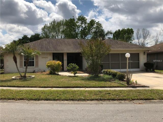 28424 Trident Court, Wesley Chapel, FL 33543 (MLS #T2936098) :: Mark and Joni Coulter   Better Homes and Gardens