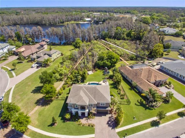5332 Beamin Dew Loop, Land O Lakes, FL 34638 (MLS #T2936116) :: Arruda Family Real Estate Team