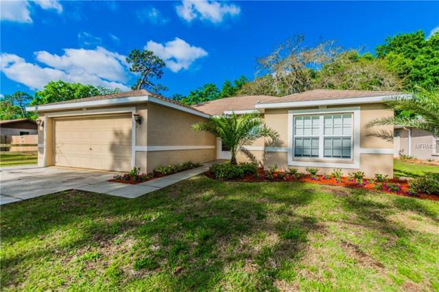 6633 Hone Street, New Port Richey, FL 34653 (MLS #T2936119) :: Arruda Family Real Estate Team