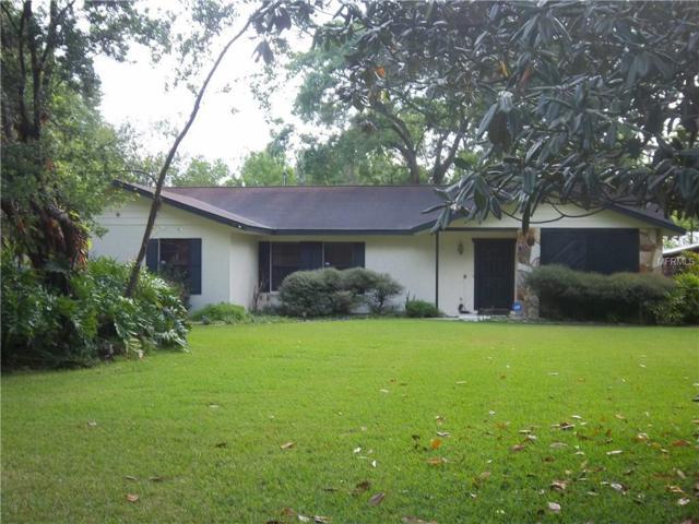 10126 Bryant Road, Lithia, FL 33547 (MLS #T2936153) :: BCA Realty