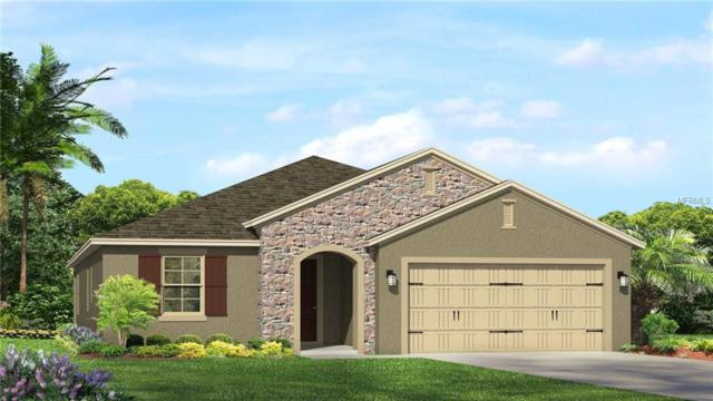 3538 Wicket Field Road, Lutz, FL 33548 (MLS #T2936177) :: Arruda Family Real Estate Team