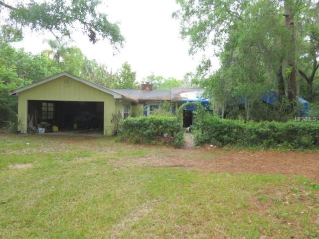 20435 Moss Branch Court, Lutz, FL 33558 (MLS #T2936187) :: Arruda Family Real Estate Team