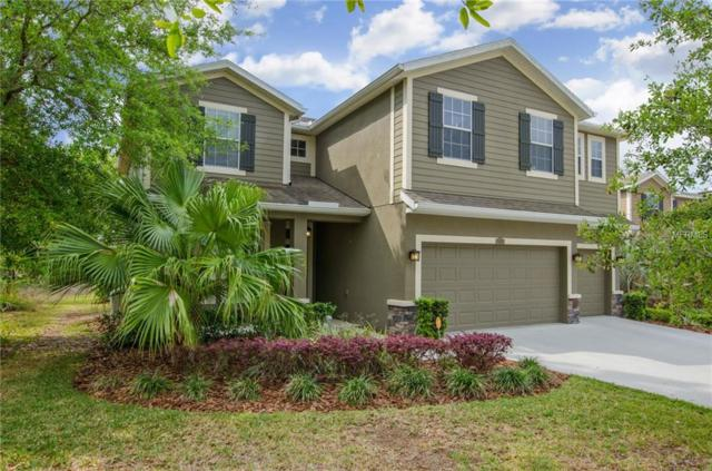 24182 San Giovanni Drive, Land O Lakes, FL 34639 (MLS #T2936225) :: Arruda Family Real Estate Team