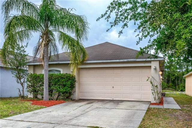 30531 Birdhouse Drive, Wesley Chapel, FL 33545 (MLS #T2936261) :: Lovitch Realty Group, LLC