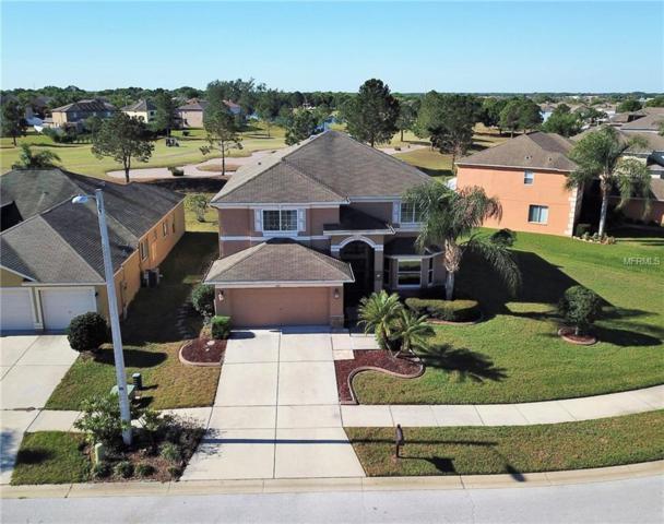 10911 Hoffner Edge Drive, Riverview, FL 33579 (MLS #T2936290) :: BCA Realty