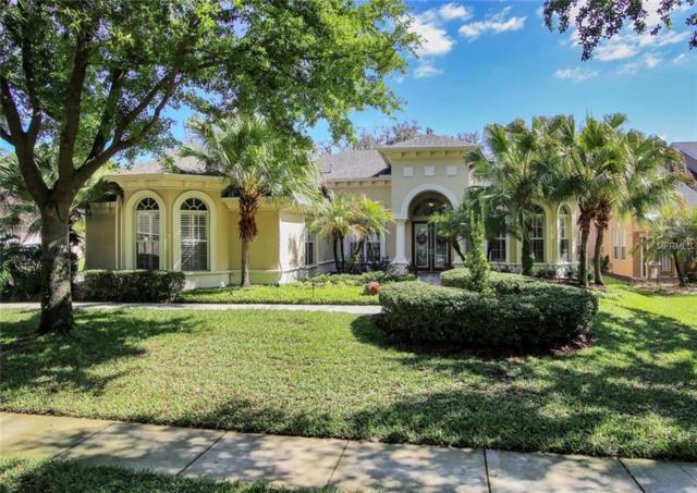 6132 Kestrelridge Drive, Lithia, FL 33547 (MLS #T2936297) :: BCA Realty