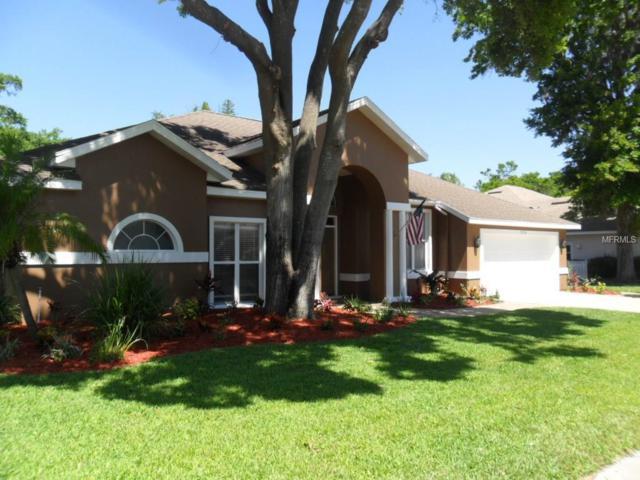 2334 Eagle Bluff Drive, Valrico, FL 33596 (MLS #T2936309) :: Arruda Family Real Estate Team