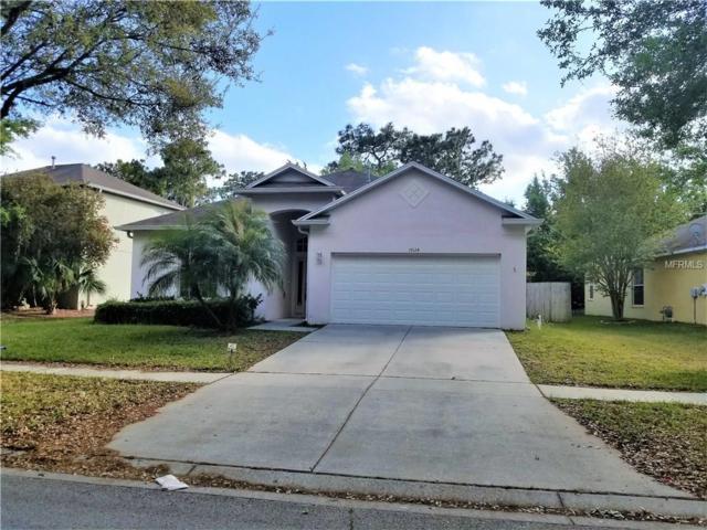 19124 Wood Sage Drive, Tampa, FL 33647 (MLS #T2936314) :: Arruda Family Real Estate Team