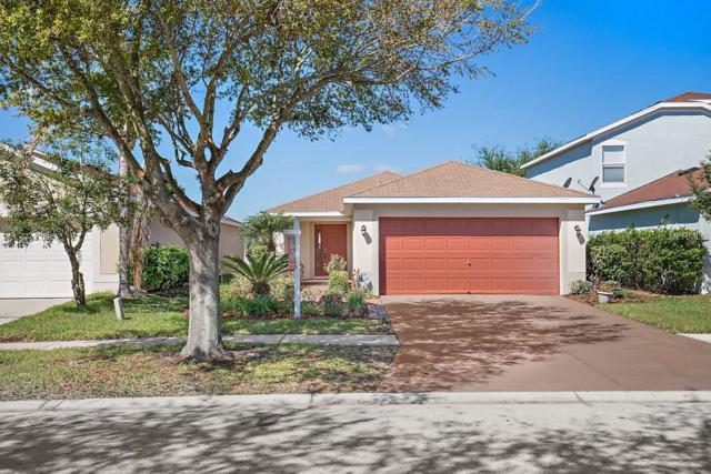 11419 Crestlake Village Drive, Riverview, FL 33569 (MLS #T2936338) :: Arruda Family Real Estate Team
