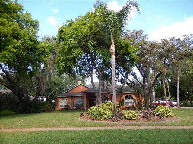 8902 Eagle Watch Drive, Riverview, FL 33578 (MLS #T2936382) :: BCA Realty