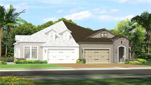 4275 Barletta Court, Wesley Chapel, FL 33543 (MLS #T2936393) :: The Duncan Duo Team