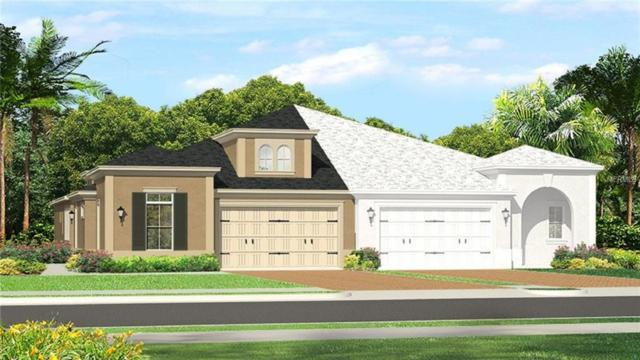 4615 Barletta Court, Wesley Chapel, FL 33543 (MLS #T2936413) :: The Duncan Duo Team