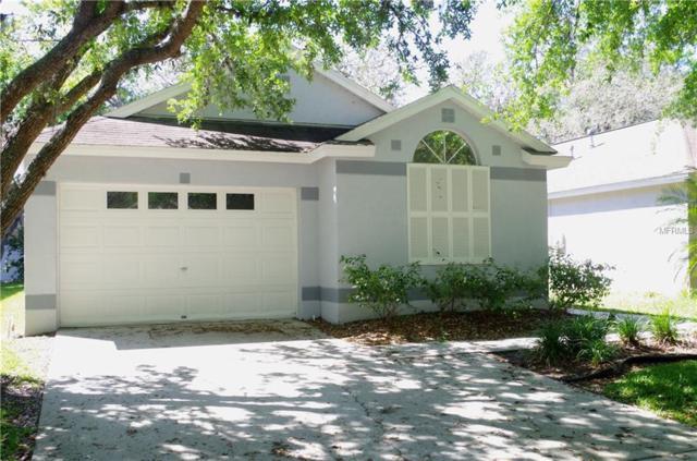 5836 Tanagerlake Road, Lithia, FL 33547 (MLS #T2936458) :: BCA Realty