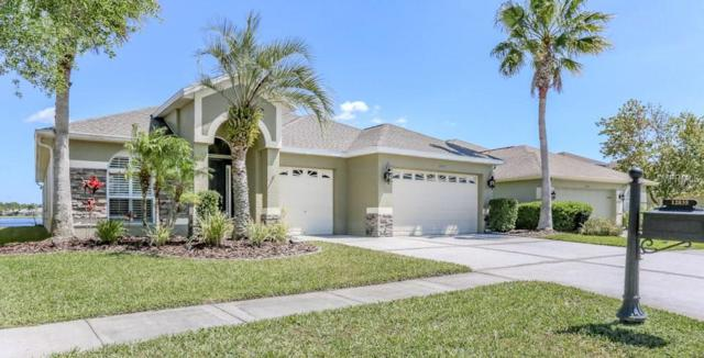 12835 Tar Flower Drive, Tampa, FL 33626 (MLS #T2936459) :: Chenault Group