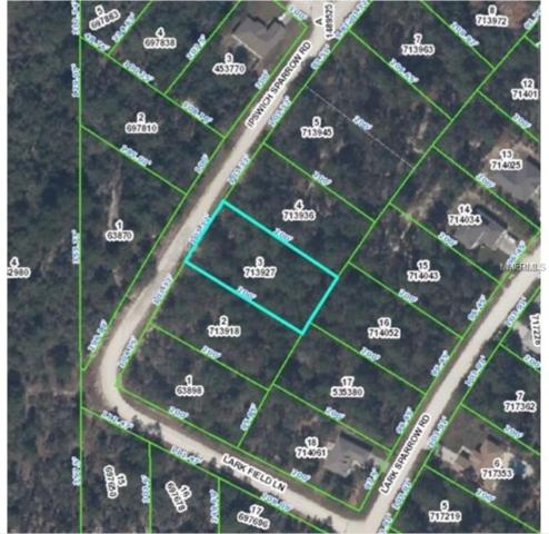 Ipswich Sparrow Road, Weeki Wachee, FL 34614 (MLS #T2936515) :: Godwin Realty Group