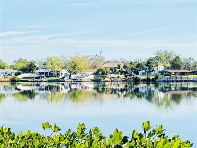 Bay Shore Drive, Tarpon Springs, FL 34689 (MLS #T2936551) :: Chenault Group