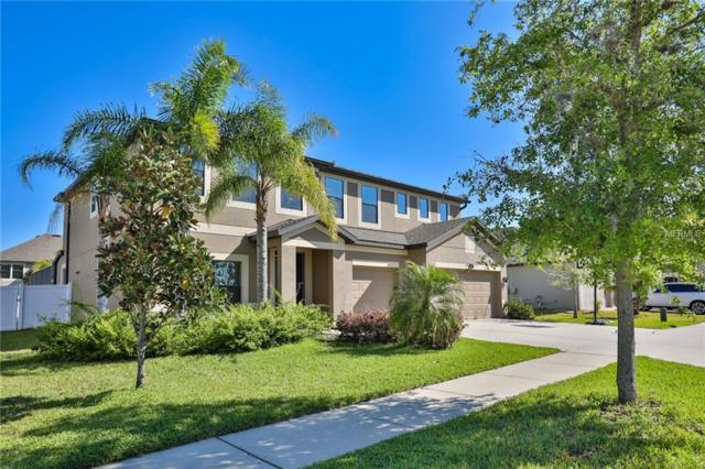 11804 Harpswell Drive, Riverview, FL 33579 (MLS #T2936558) :: BCA Realty