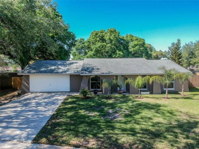 4307 Foxglen Lane, Tampa, FL 33624 (MLS #T2936598) :: BCA Realty