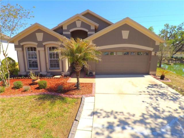 6843 Bluff Meadow Court, Wesley Chapel, FL 33545 (MLS #T2936640) :: The Duncan Duo Team