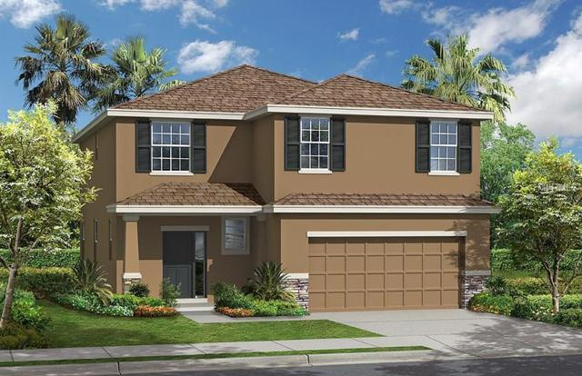 5017 Jackel Chase Drive, Wimauma, FL 33598 (MLS #T2936810) :: The Duncan Duo Team