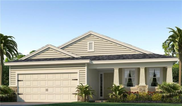 5006 Jackel Chase Drive, Wimauma, FL 33598 (MLS #T2936813) :: The Duncan Duo Team