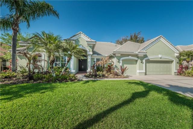 11807 Marblehead Drive, Tampa, FL 33626 (MLS #T2936815) :: The Duncan Duo Team