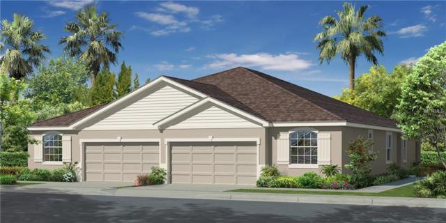 7904 Timberview Loop, Wesley Chapel, FL 33545 (MLS #T2937246) :: Team Bohannon Keller Williams, Tampa Properties