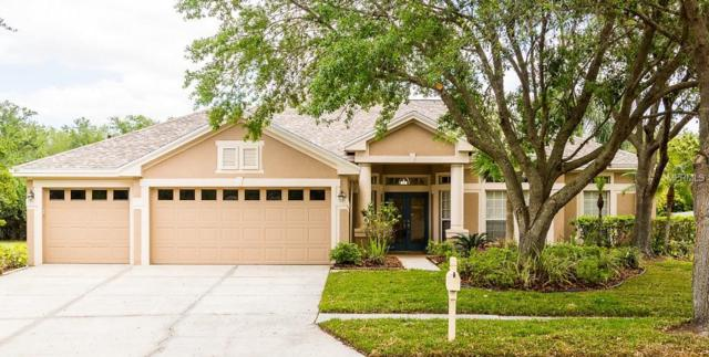 10250 Shadow Branch Drive, Tampa, FL 33647 (MLS #T2937835) :: Team Bohannon Keller Williams, Tampa Properties