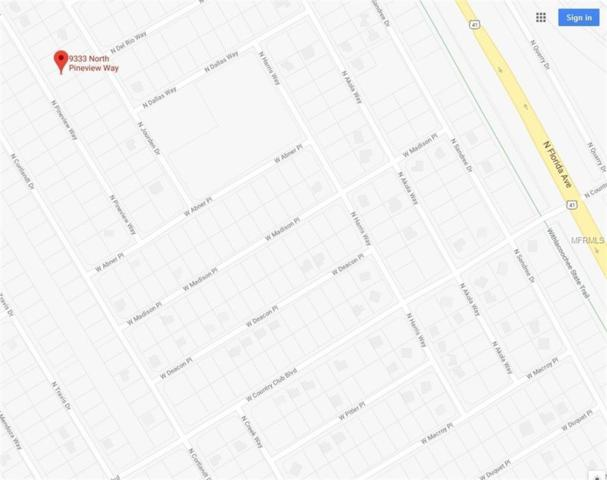 9333 N Pineview Way, Citrus Springs, FL 34434 (MLS #T2937933) :: The Lockhart Team