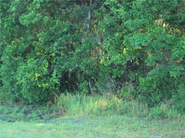 County Line Road, Lakeland, FL 33811 (MLS #T2938049) :: KELLER WILLIAMS CLASSIC VI