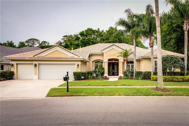 9814 Emerald Links Drive, Tampa, FL 33626 (MLS #T2938208) :: The Duncan Duo Team