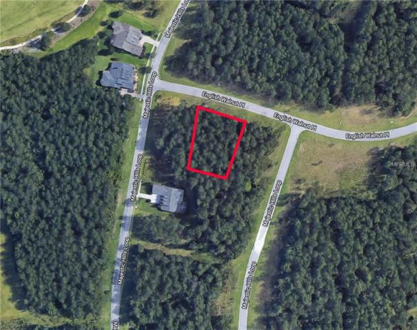 19844 English Walnut Place, Brooksville, FL 34601 (MLS #T2938250) :: The Lockhart Team