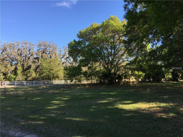 17922 Boyette Road, Lithia, FL 33547 (MLS #T2938320) :: Team Bohannon Keller Williams, Tampa Properties