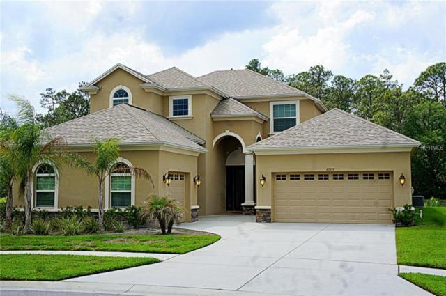 27170 Hawks Nest Circle, Wesley Chapel, FL 33544 (MLS #T2938370) :: The Duncan Duo Team