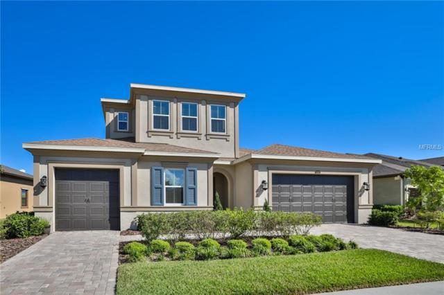 13224 Fawn Lily Drive, Riverview, FL 33579 (MLS #T2938490) :: The Duncan Duo Team