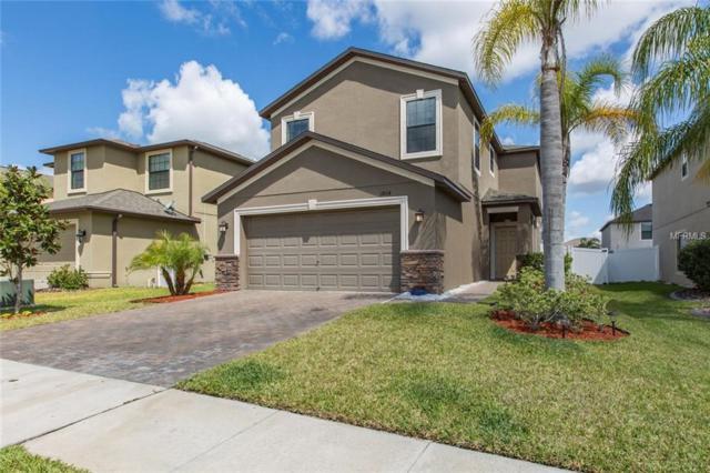 11864 Crestridge Loop, New Port Richey, FL 34655 (MLS #T2938516) :: Team Virgadamo