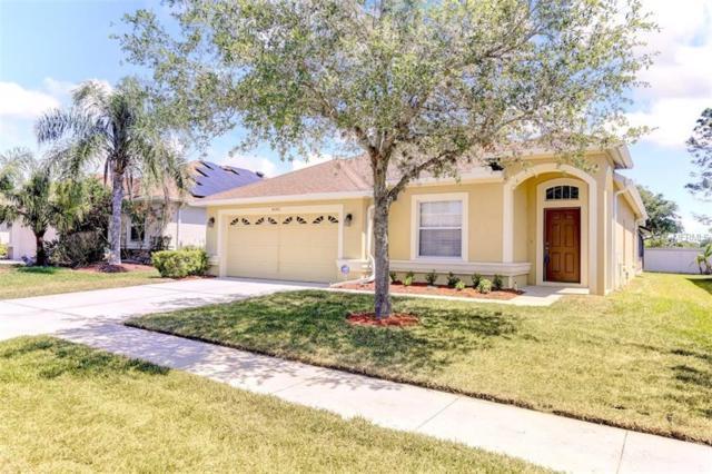 4042 Langdrum Drive, Wesley Chapel, FL 33543 (MLS #T2938540) :: Griffin Group