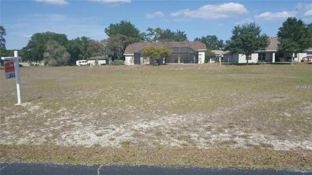 6022 Sundown Drive, Dade City, FL 33523 (MLS #T2938575) :: Griffin Group