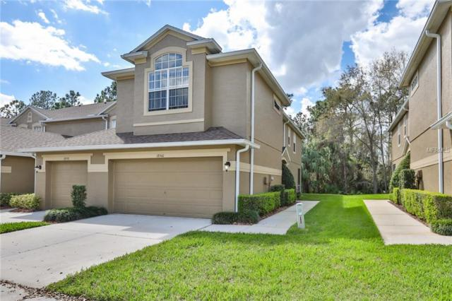 18960 Duquesne Drive, Tampa, FL 33647 (MLS #T2938603) :: The Duncan Duo Team
