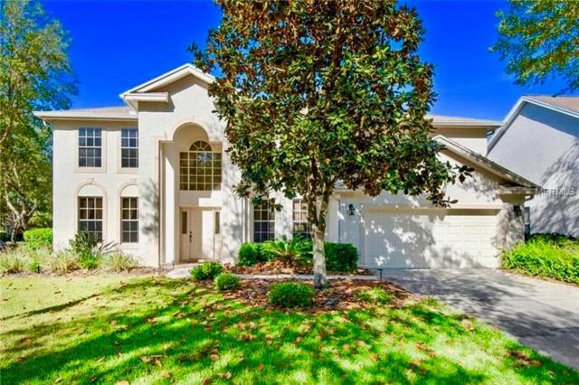 8772 Ashworth Drive, Tampa, FL 33647 (MLS #T2938798) :: The Lockhart Team